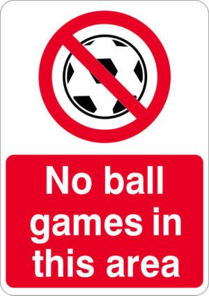 No Ball Games Sign alternate image