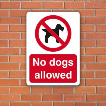 no-dogs-allowed-1914-p