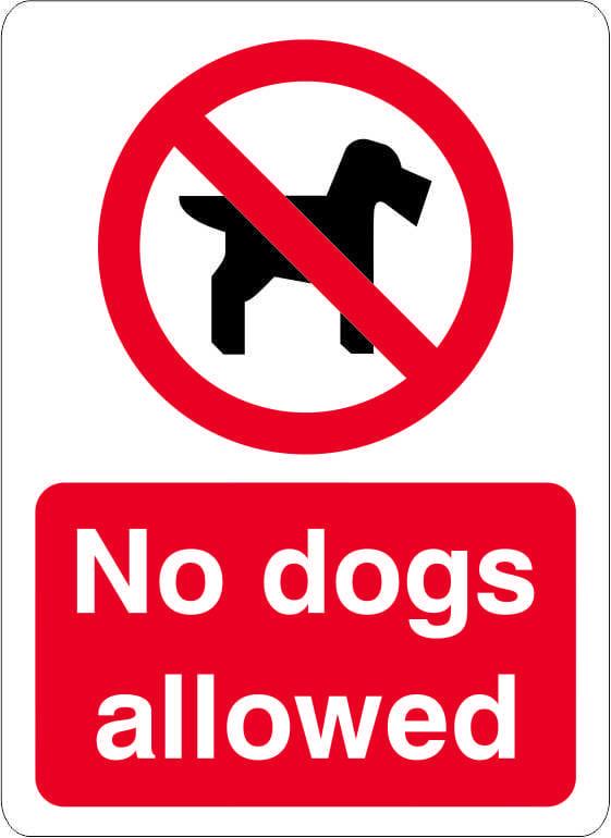 no-dogs-allowed-2-1914-p.jpg
